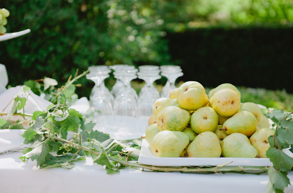 Alex-Alena-Kurtz-Orchard-Wedding-Niagara-Falls-Geminie-Photography-25
