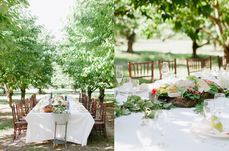Alex-Alena-Kurtz-Orchard-Wedding-Niagara-Falls-Geminie-Photography-26