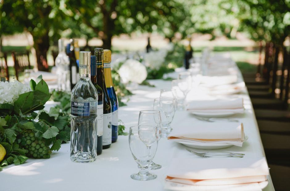 Alex-Alena-Kurtz-Orchard-Wedding-Niagara-Falls-Geminie-Photography-27