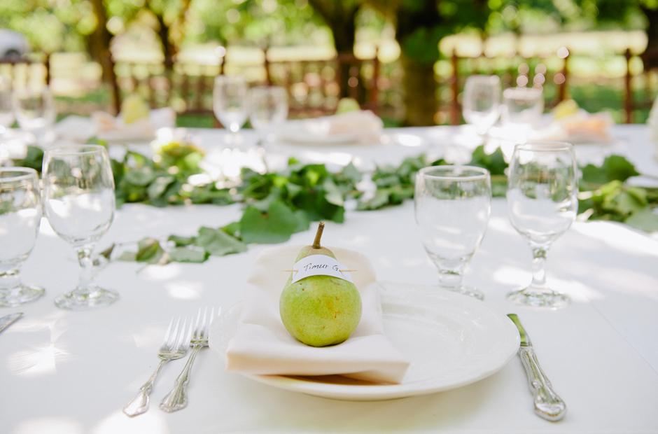 Alex-Alena-Kurtz-Orchard-Wedding-Niagara-Falls-Geminie-Photography-40