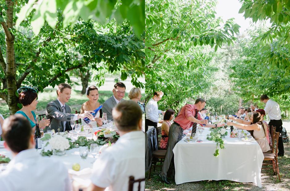 Alex-Alena-Kurtz-Orchard-Wedding-Niagara-Falls-Geminie-Photography-45